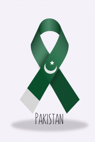 Pakistan Flag Ribbon  free mobile wallpapers