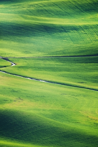 Green Grassland  free mobile wallpapers