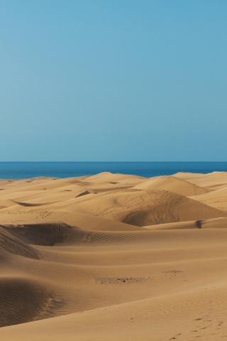 Desert Adventure  free mobile wallpapers