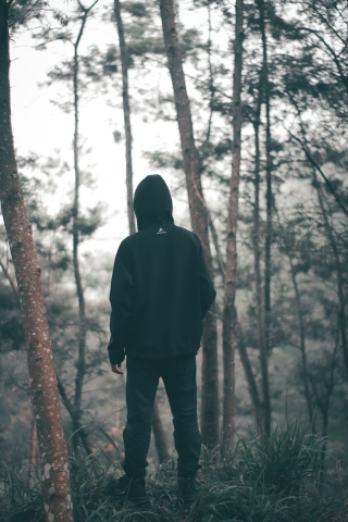 Black Hoodie Alone in Forest  free mobile background